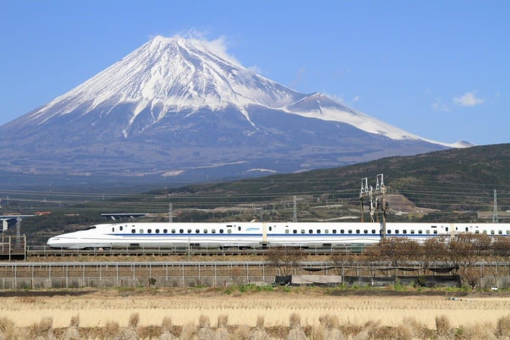 Discover Mt. Fuji: Online Experience